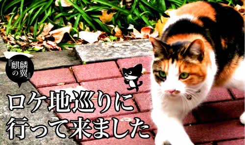 麒麟の翼_扉.jpg